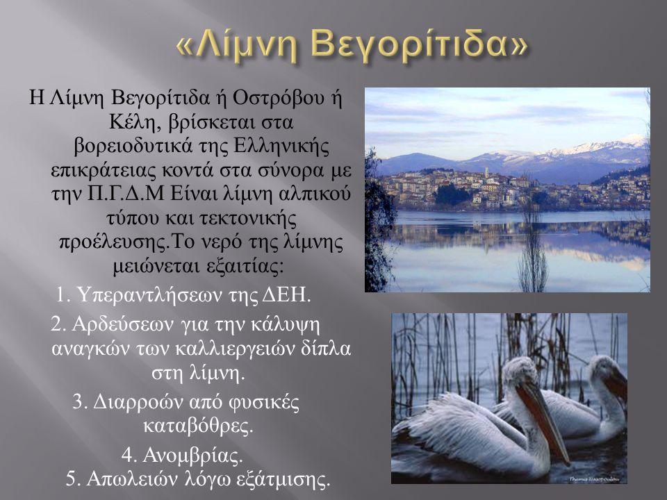 «Λίμνη Bεγορίτιδα»