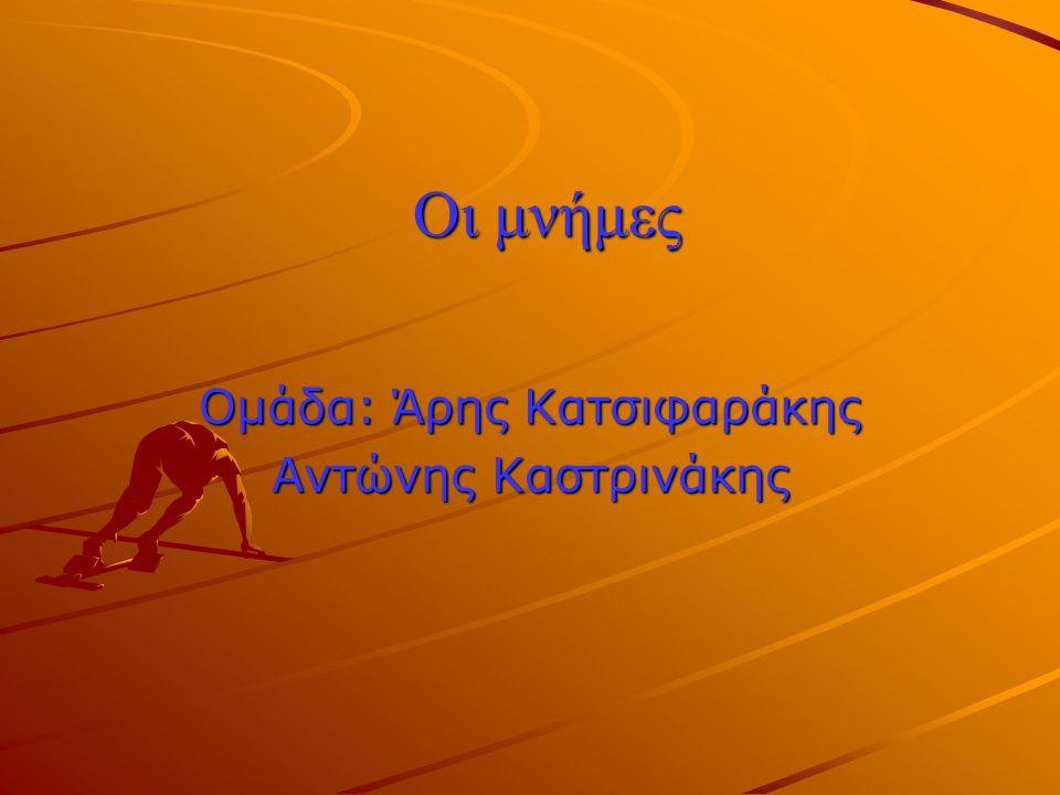 Ομάδα: Άρης Κατσιφαράκης Αντώνης Καστρινάκης