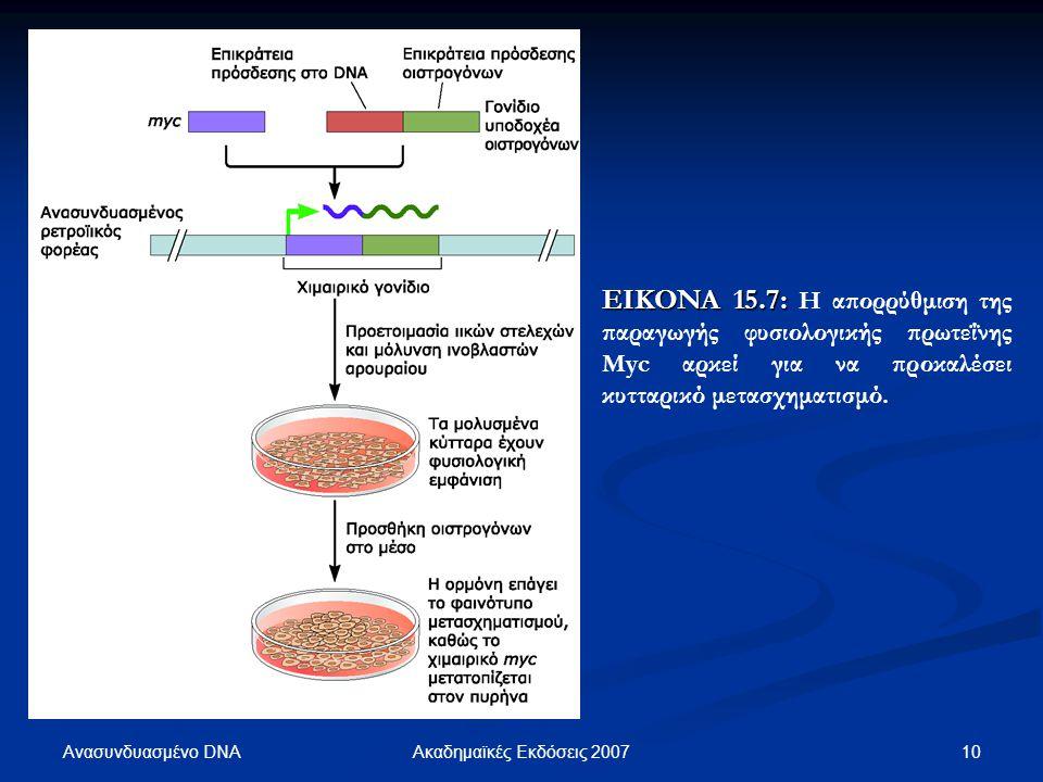 ΕΙΚΟΝΑ 15.7: Η απορρύθμιση της παραγωγής φυσιολογικής πρωτεΐνης Myc αρκεί για να προκαλέσει κυτταρικό μετασχηματισμό.