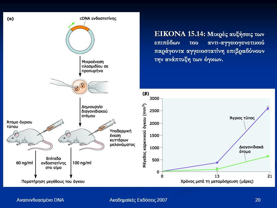 ΕΙΚΟΝΑ 15.14: Μικρές αυξήσεις των επιπέδων του αντι-αγγειογενετικού παράγοντα αγγειοστατίνη επιβραδύνουν την ανάπτυξη των όγκων.