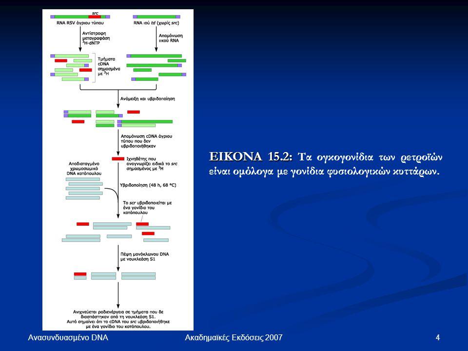 ΕΙΚΟΝΑ 15.2: Τα ογκογονίδια των ρετροϊών είναι ομόλογα με γονίδια φυσιολογικών κυττάρων.