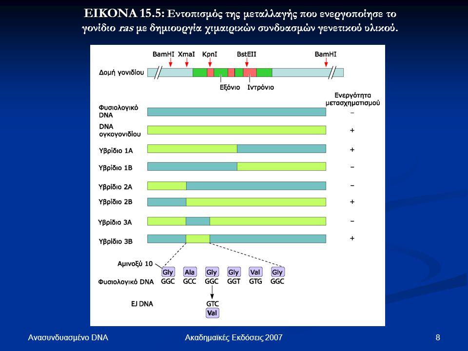 ΕΙΚΟΝΑ 15.5: Εντοπισμός της μεταλλαγής που ενεργοποίησε το γονίδιο ras με δημιουργία χιμαιρικών συνδυασμών γενετικού υλικού.