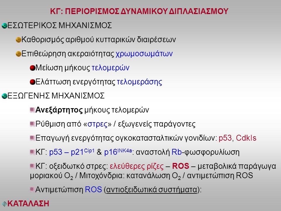 ΚΓ: ΠΕΡΙΟΡΙΣΜΟΣ ΔΥΝΑΜΙΚΟΥ ΔΙΠΛΑΣΙΑΣΜΟΥ