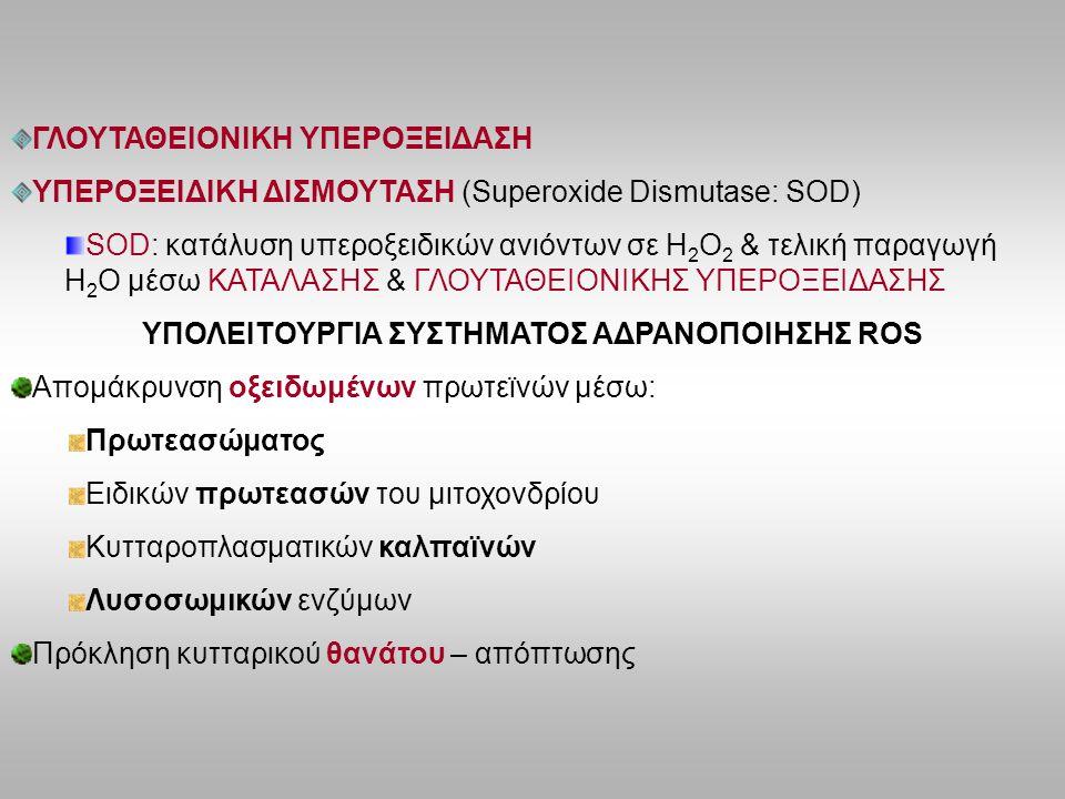 ΥΠΟΛΕΙΤΟΥΡΓΙΑ ΣΥΣΤΗΜΑΤΟΣ ΑΔΡΑΝΟΠΟΙΗΣΗΣ ROS