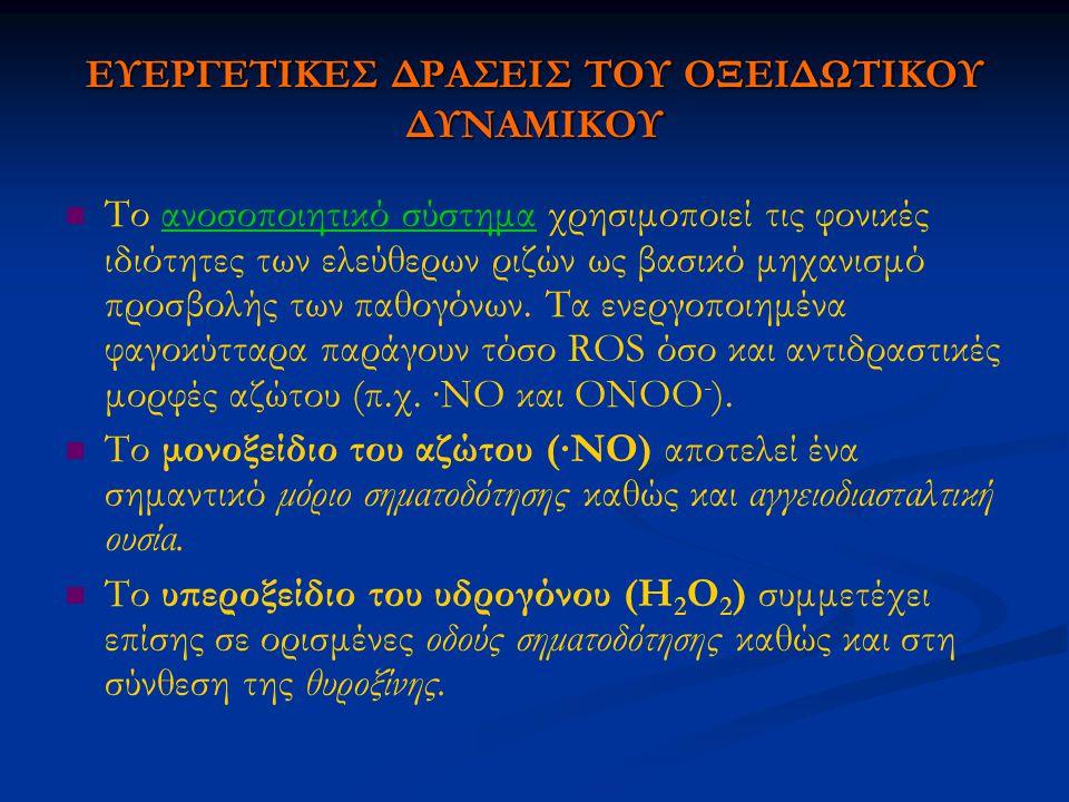 ΕΥΕΡΓΕΤΙΚΕΣ ΔΡΑΣΕΙΣ ΤΟΥ ΟΞΕΙΔΩΤΙΚΟΥ ΔΥΝΑΜΙΚΟΥ