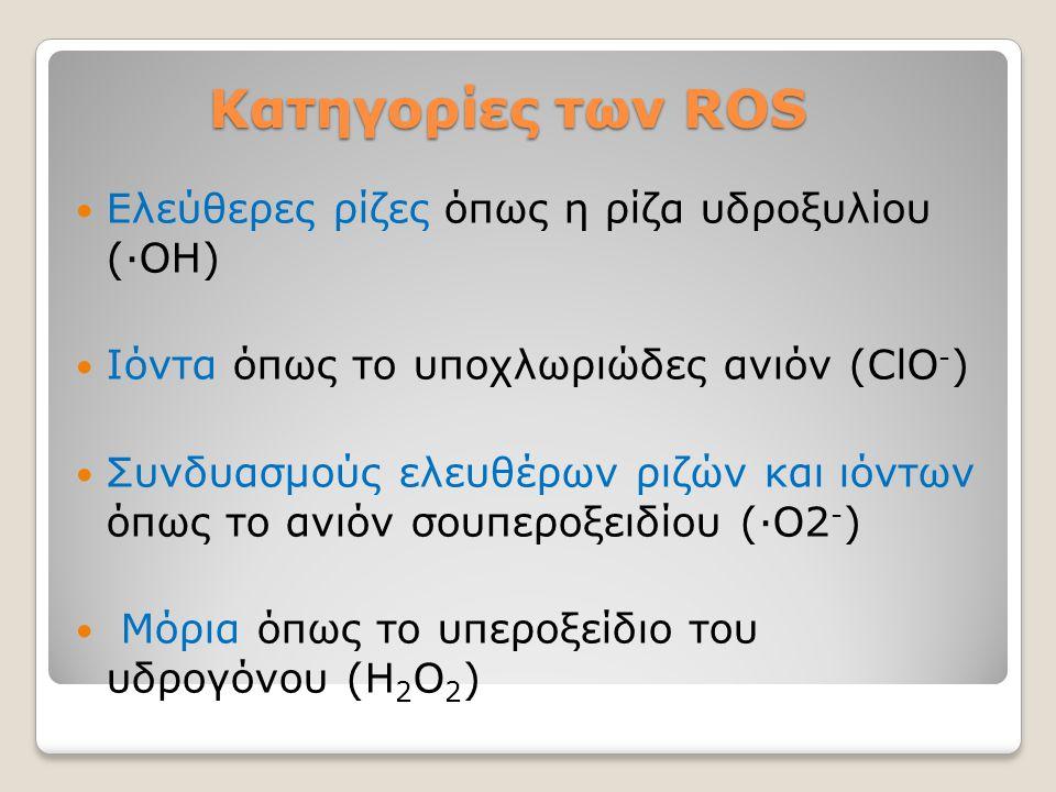 Κατηγορίες των ROS Ελεύθερες ρίζες όπως η ρίζα υδροξυλίου (∙ΟΗ)