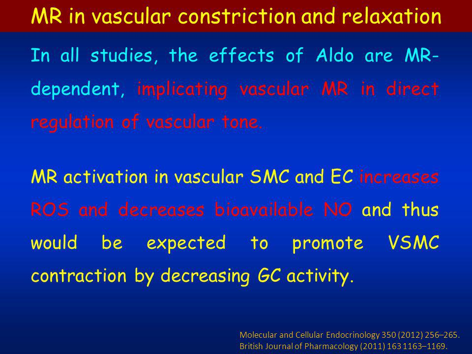MR in vascular constriction and relaxation