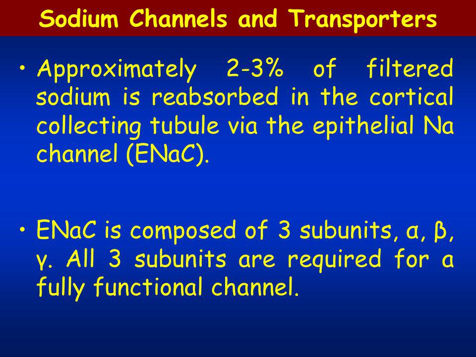 Sodium Channels and Transporters