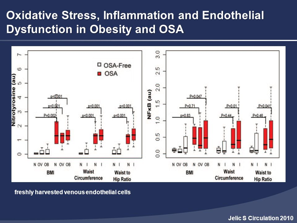 Oxidative Stress, Inflammation and Endothelial Dysfunction in Obesity and OSA
