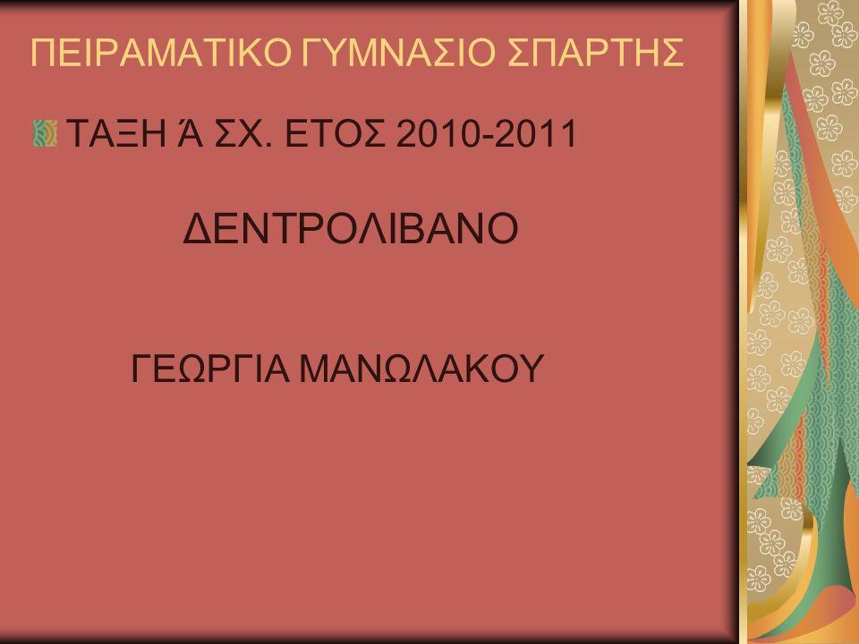 ΠΕΙΡΑΜΑΤΙΚΟ ΓΥΜΝΑΣΙΟ ΣΠΑΡΤΗΣ