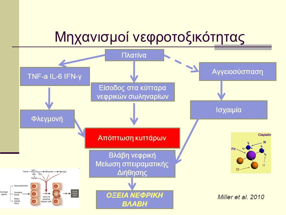 Μηχανισμοί νεφροτοξικότητας