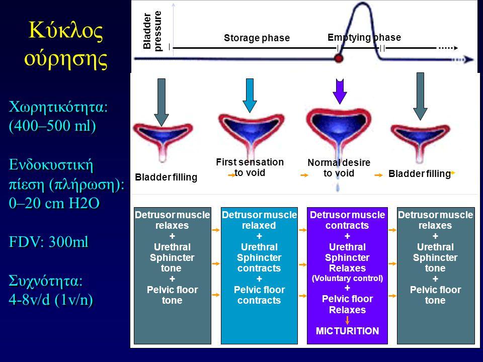 Κύκλος ούρησης Χωρητικότητα: (400–500 ml)