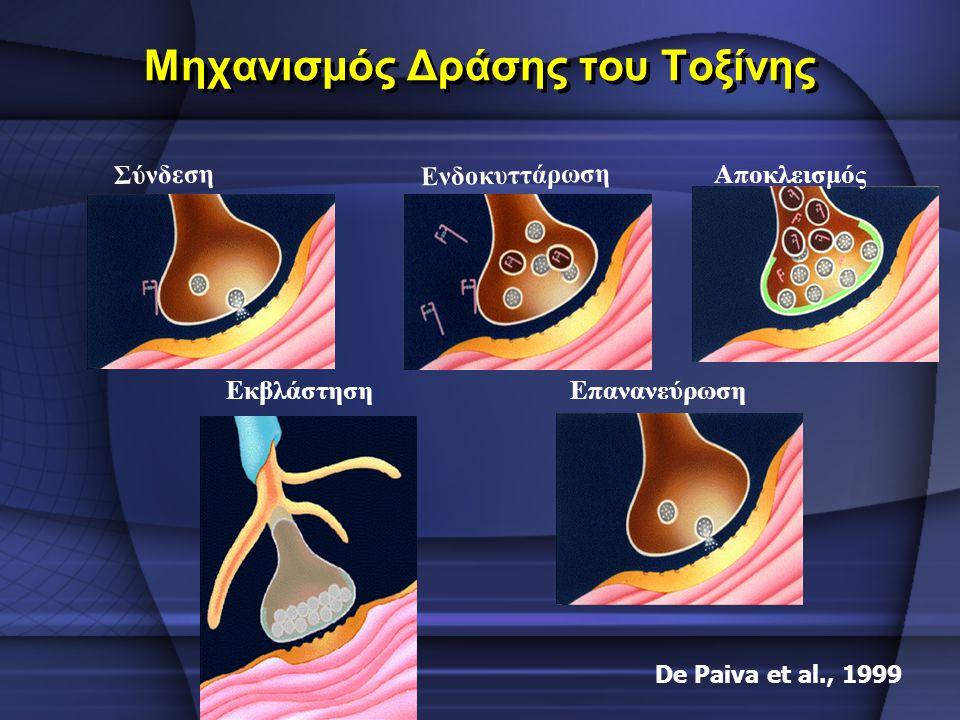 Μηχανισμός Δράσης του Τοξίνης