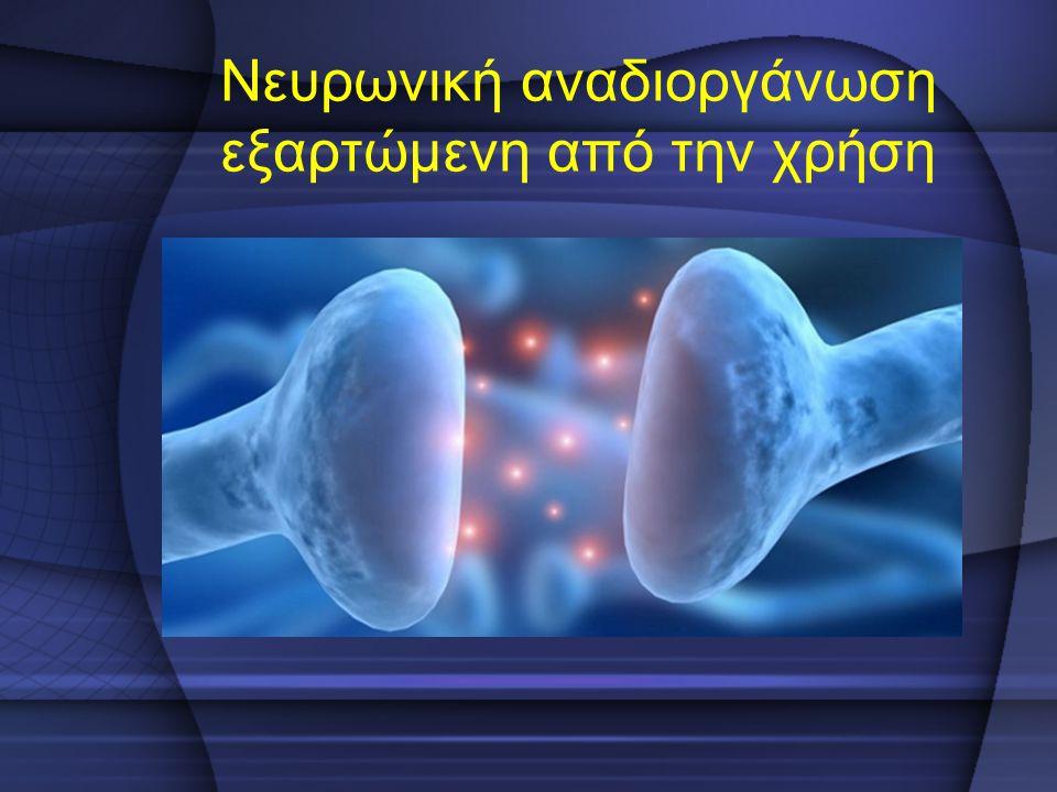 Νευρωνική αναδιοργάνωση εξαρτώμενη από την χρήση