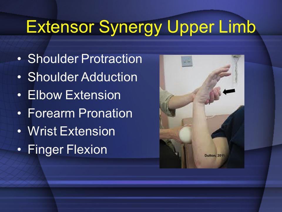 Extensor Synergy Upper Limb