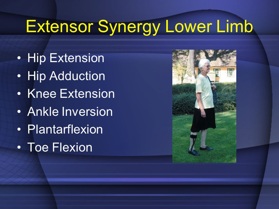 Extensor Synergy Lower Limb