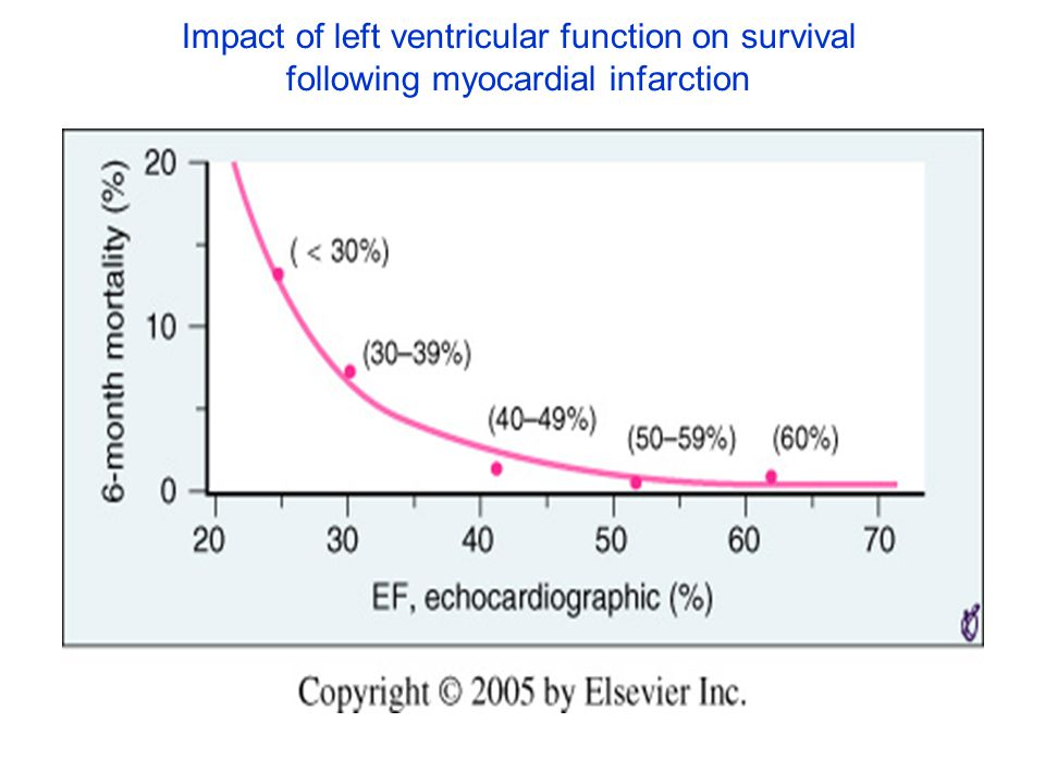 Impact of left ventricular function on survival