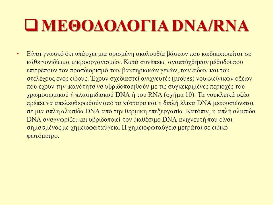 ΜΕΘΟΔΟΛΟΓΙΑ DNA/RNA