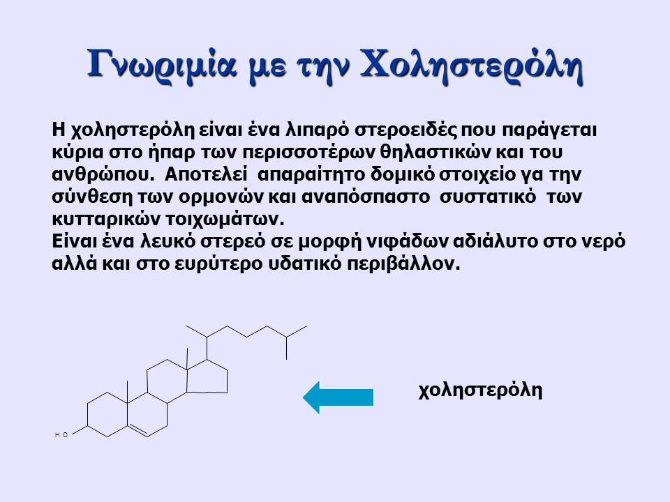 Γνωριμία με την Χοληστερόλη