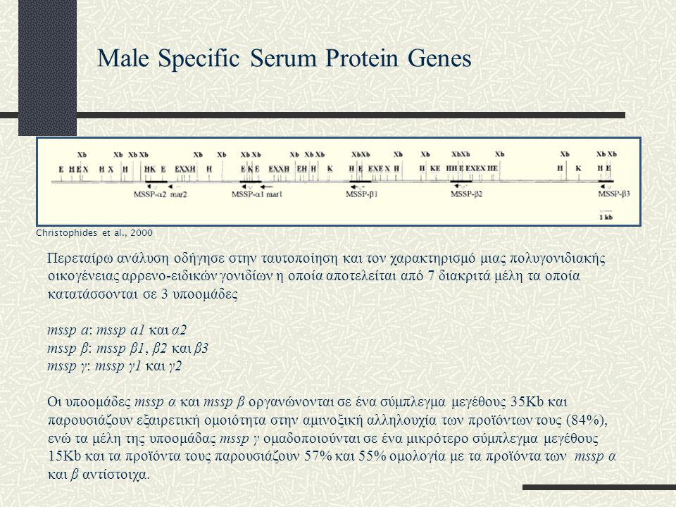 Male Specific Serum Protein Genes