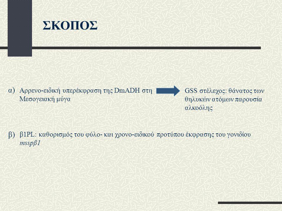 ΣΚΟΠΟΣ α) β) Αρρενο-ειδική υπερέκφραση της DmADH στη Μεσογειακή μύγα