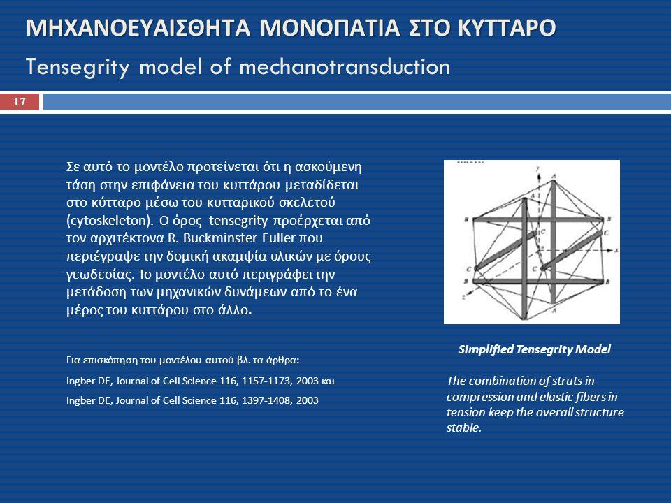 ΜΗΧΑΝΟΕΥΑΙΣΘΗΤΑ ΜΟΝΟΠΑΤΙΑ ΣΤΟ ΚΥΤΤΑΡΟ Tensegrity model of mechanotransduction