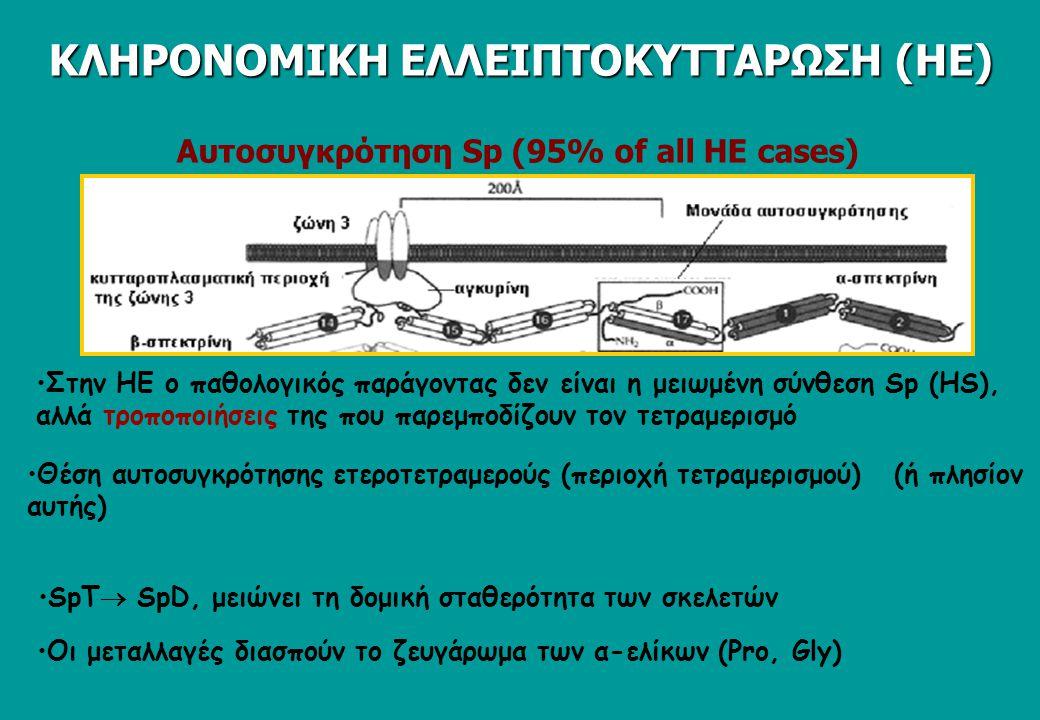 Αυτοσυγκρότηση Sp (95% of all HΕ cases)
