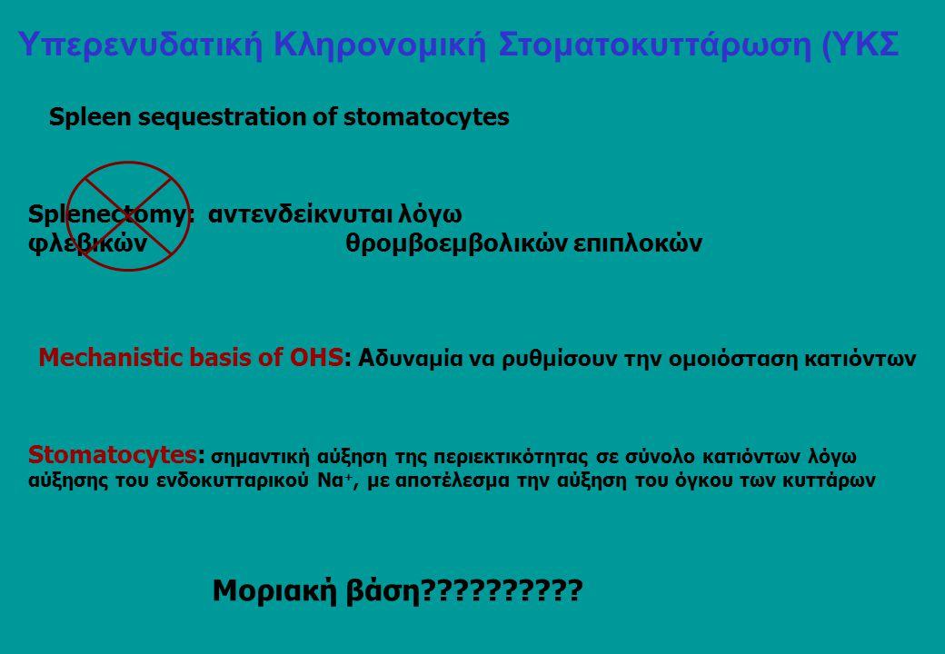 Υπερενυδατική Κληρονομική Στοματοκυττάρωση (ΥΚΣ