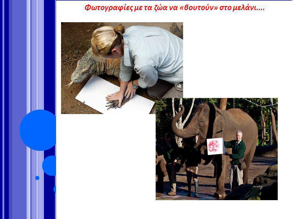 Φωτογραφίες με τα ζώα να «βουτούν» στο μελάνι....