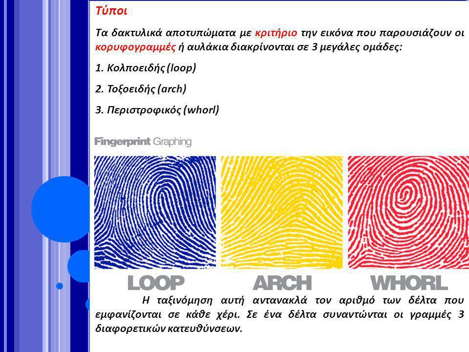 Τύποι Τα δακτυλικά αποτυπώματα με κριτήριο την εικόνα που παρουσιάζουν οι κορυφογραμμές ή αυλάκια διακρίνονται σε 3 μεγάλες ομάδες: