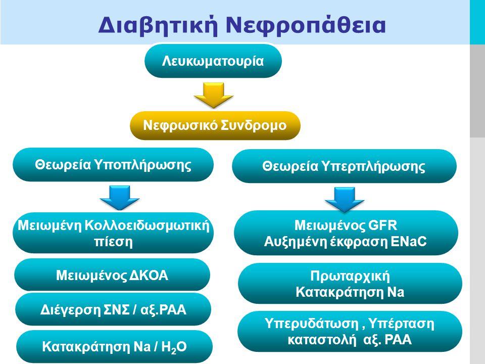 Διαβητική Νεφροπάθεια