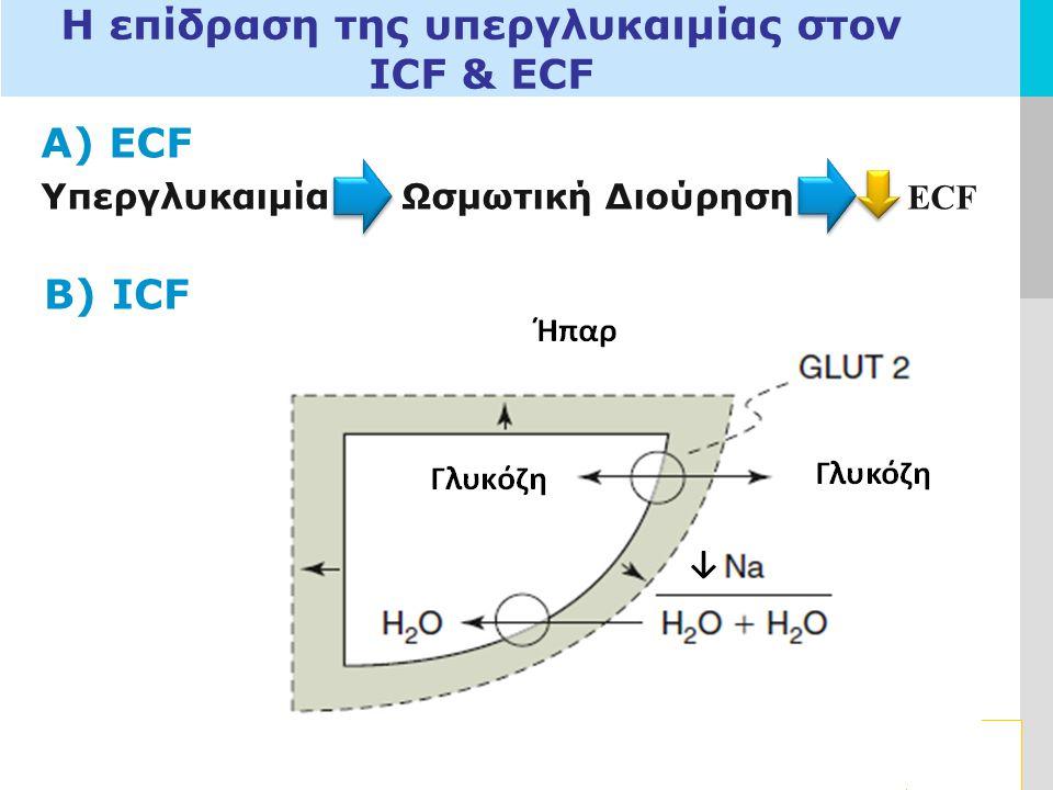 Η επίδραση της υπεργλυκαιμίας στον ICF & ECF