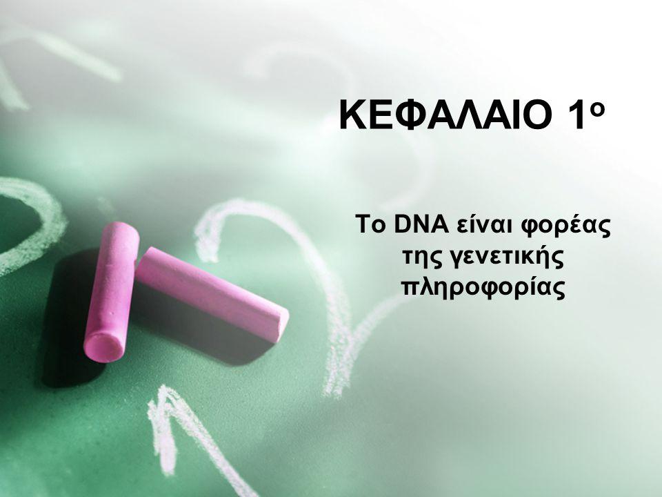 Το DNA είναι φορέας της γενετικής πληροφορίας