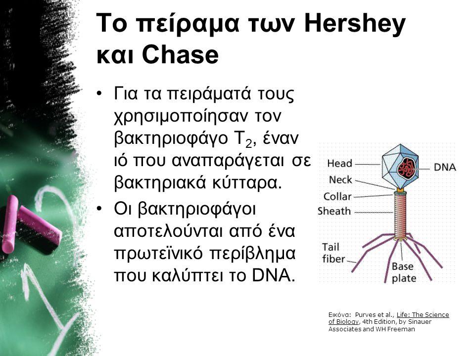Το πείραμα των Hershey και Chase