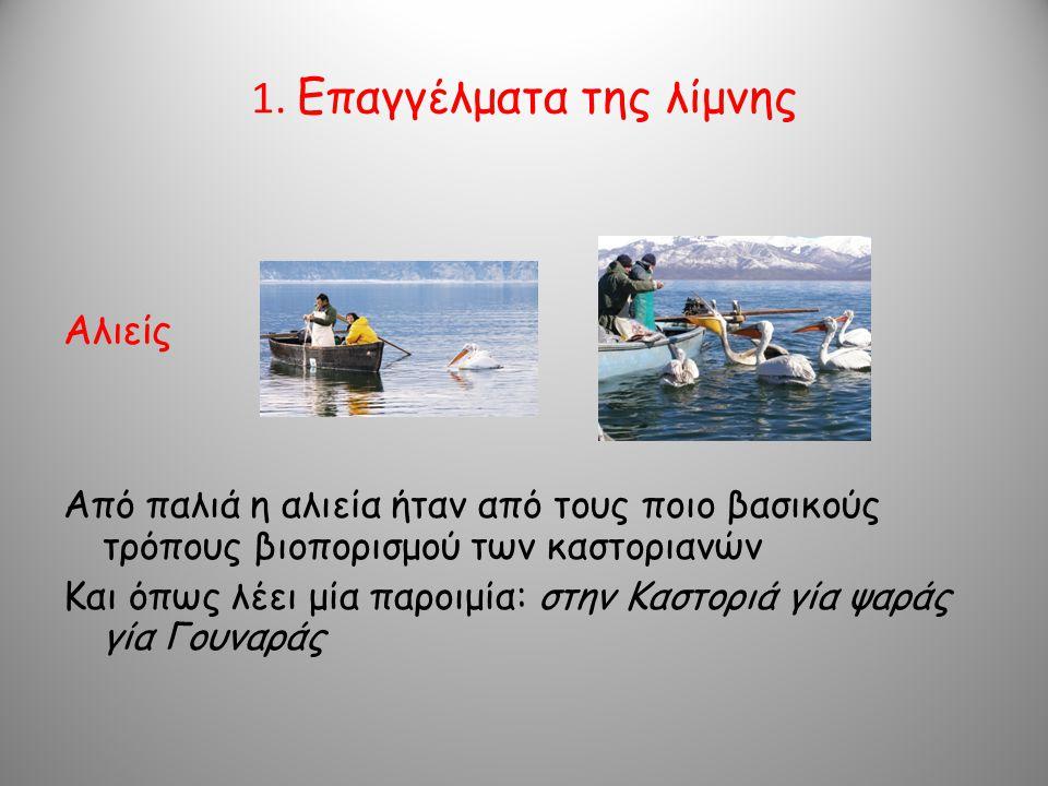 1. Επαγγέλματα της λίμνης