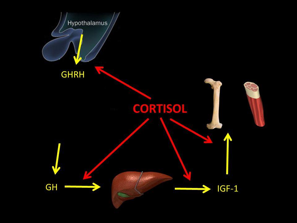 GHRH CORTISOL GH IGF-1