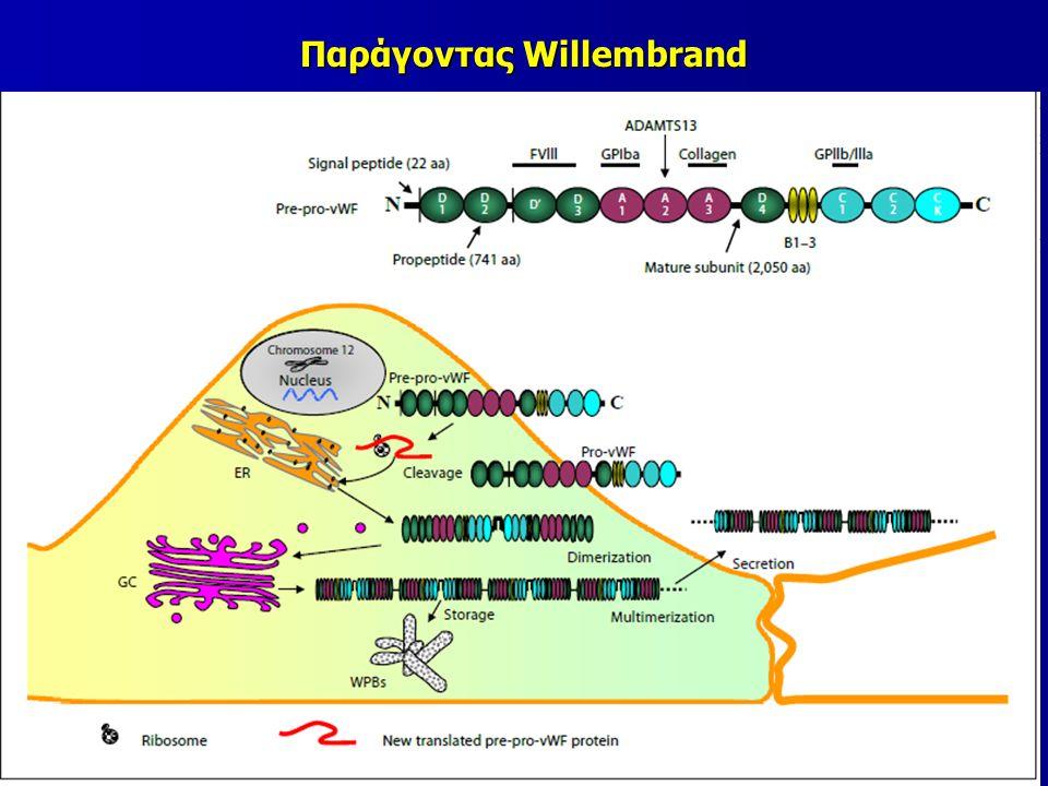 Παράγοντας Willembrand