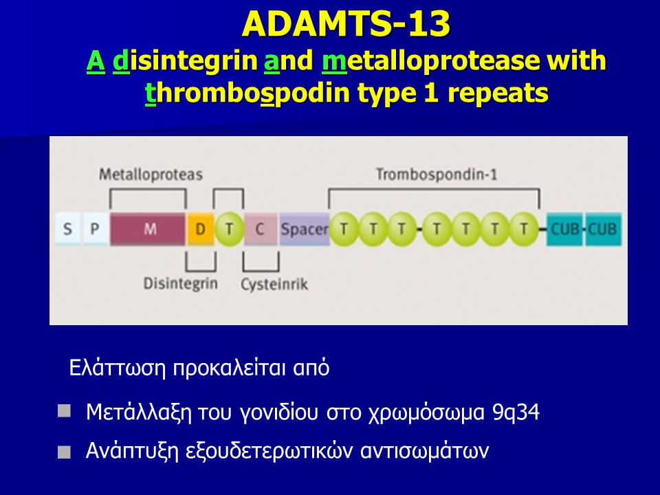 ADAMTS-13 A disintegrin and metalloprotease with thrombospodin type 1 repeats