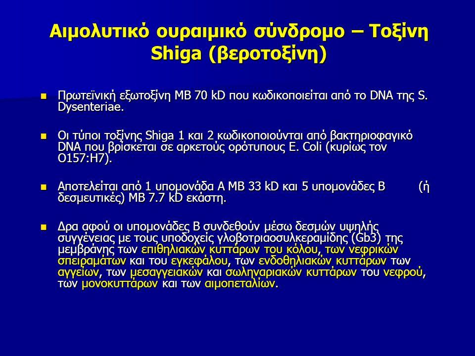 Αιμολυτικό ουραιμικό σύνδρομο – Τοξίνη Shiga (βεροτοξίνη)