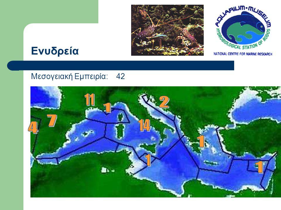 Ενυδρεία Μεσογειακή Εμπειρία: 42 11 2 1 7 14 4 1 1 1