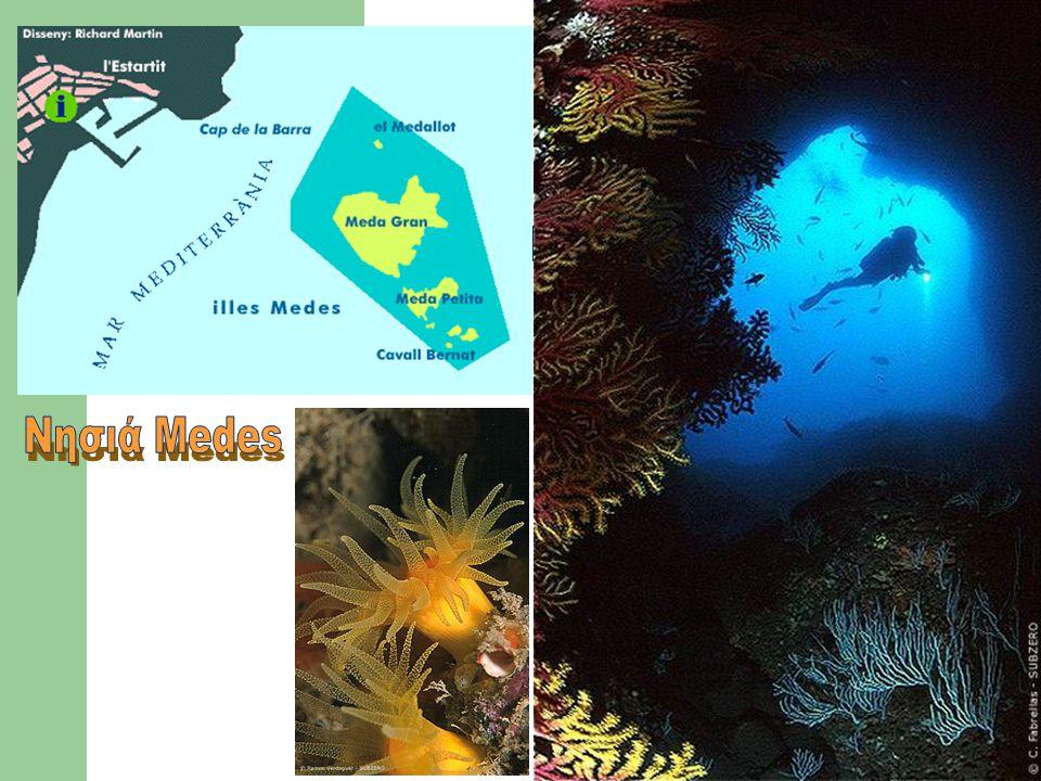 Νησιά Medes