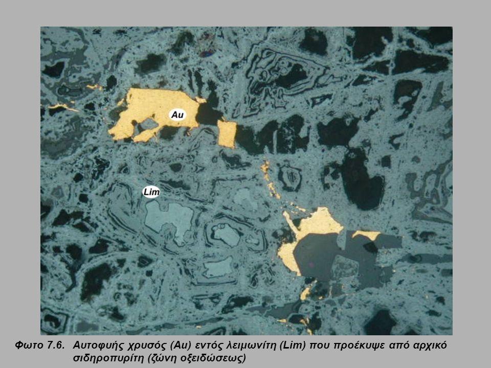 Φωτο 7.6. Aυτοφυής χρυσός (Au) εντός λειμωνίτη (Lim) που προέκυψε από αρχικό σιδηροπυρίτη (ζώνη οξειδώσεως)