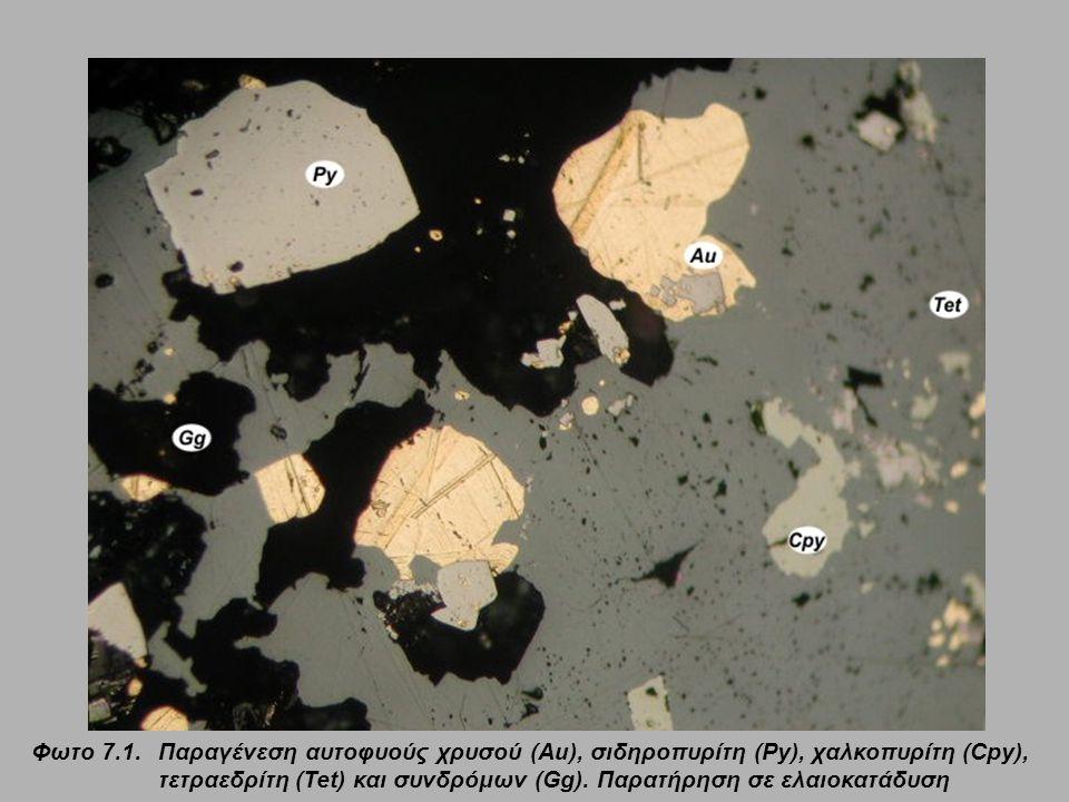 Φωτο 7.1. Παραγένεση αυτοφυούς χρυσού (Au), σιδηροπυρίτη (Py), χαλκοπυρίτη (Cpy), τετραεδρίτη (Tet) και συνδρόμων (Gg).