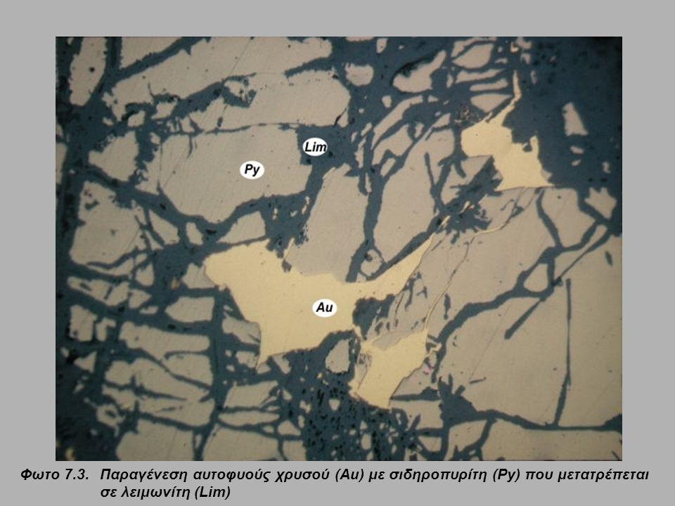 Φωτο 7.3. Παραγένεση αυτοφυούς χρυσού (Au) με σιδηροπυρίτη (Py) που μετατρέπεται σε λειμωνίτη (Lim)