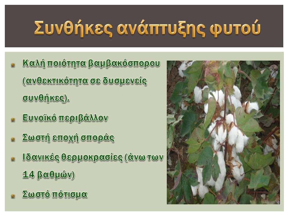 Συνθήκες ανάπτυξης φυτού