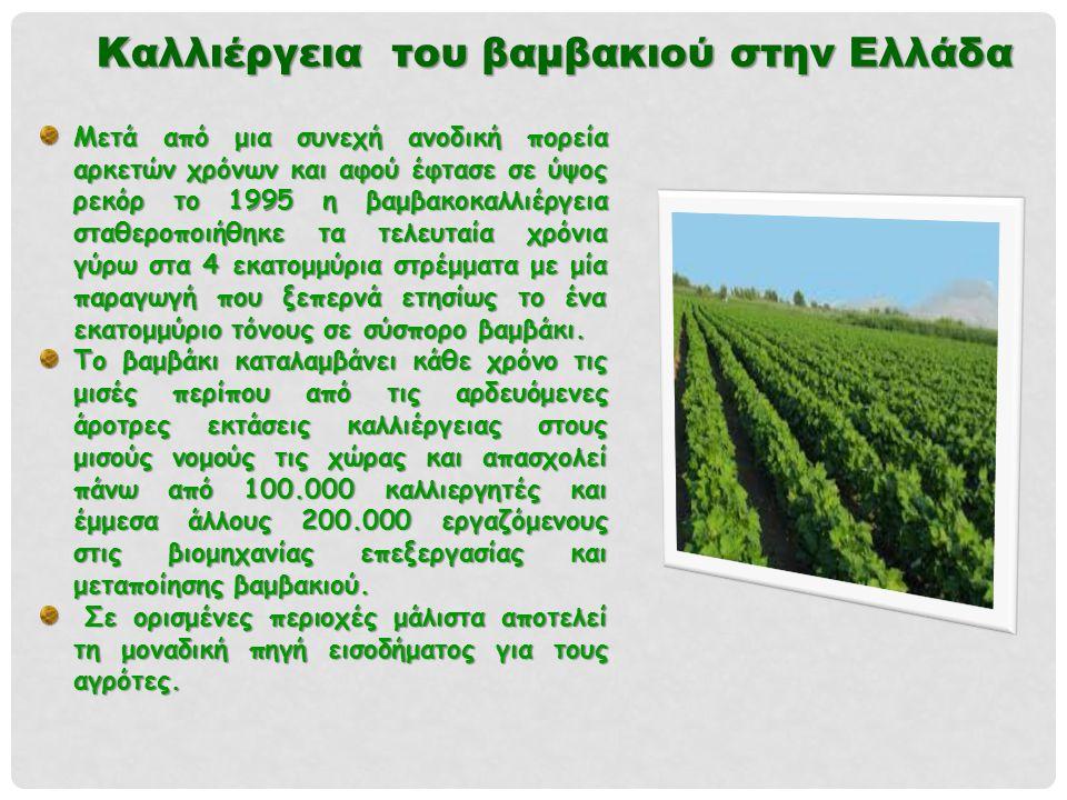 Καλλιέργεια του βαμβακιού στην Ελλάδα