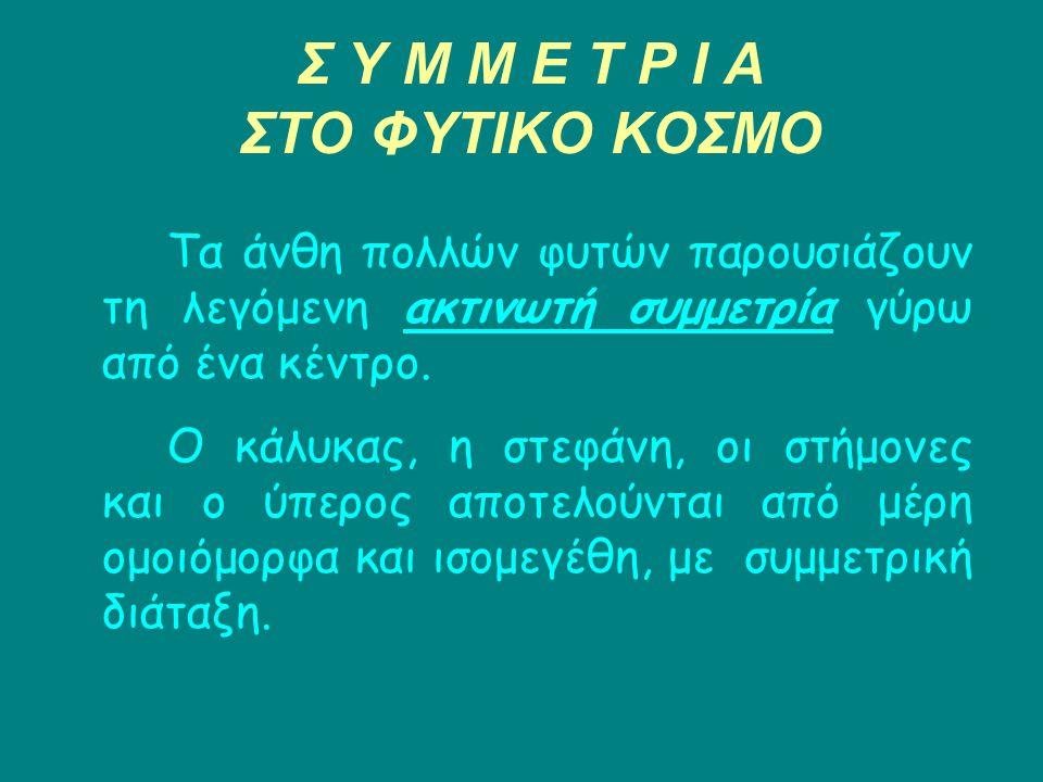 Σ Υ Μ Μ Ε Τ Ρ Ι Α ΣΤΟ ΦΥΤΙΚΟ ΚΟΣΜΟ