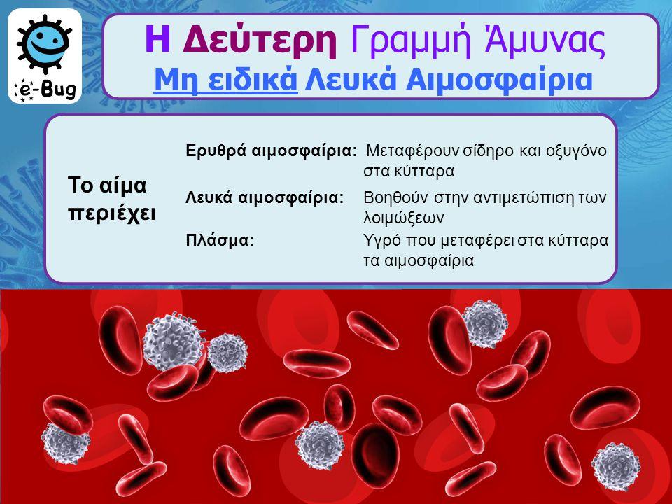 Η Δεύτερη Γραμμή Άμυνας Μη ειδικά Λευκά Αιμοσφαίρια