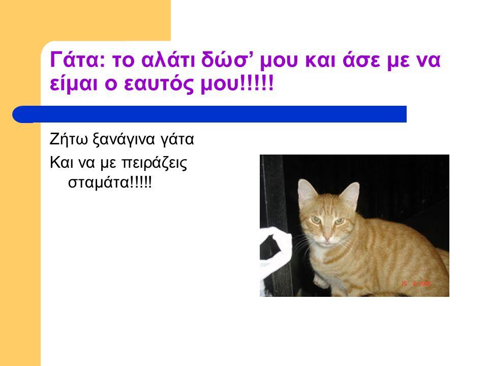 Γάτα: το αλάτι δώσ' μου και άσε με να είμαι ο εαυτός μου!!!!!