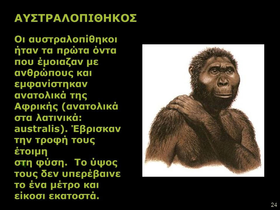 ΑΥΣΤΡΑΛΟΠΙΘΗΚΟΣ